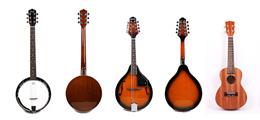 Overige snaarinstrumenten als banjo, mandoline en ukelele